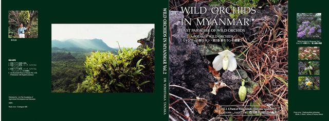 Wild Orchids In Myanmar Dr Yoshitaka Tanaka